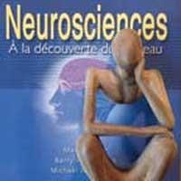 neuro-zen